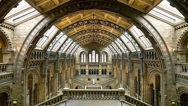 museum-interior-126648